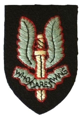 2nd Parachute Chasseur Regiment - Image: Insigne de béret SAS Tissu