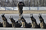 Internal troops special units counter-terror tactical exercises (556-39).jpg