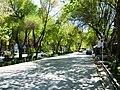 Isfahan street 2014.jpg