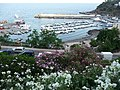 Isola di Ustica, Sicily - panoramio (28).jpg