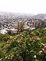 Israel-Carmel-050508 216 (2551342975).jpg