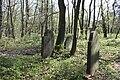 Jüdischer Friedhof Hoyerhagen 20090413 028.JPG