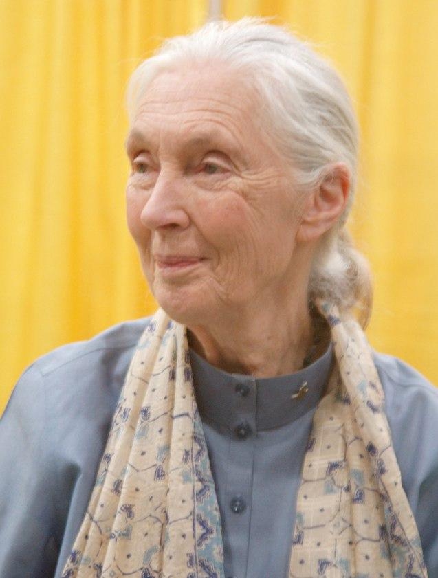 JaneGoodallSept2011