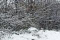 Jardin naturel (Paris) sous la neige 15.jpg