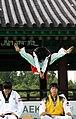 KOCIS Korea Taekwondo Namsan 22 (7628120872).jpg
