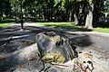 Kalamaja kalmistu-park1.jpg