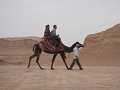Kalut Camel ride (49686184788).jpg