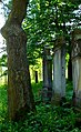 Kamienna Góra, cmentarz żydowskiDSC06866.JPG
