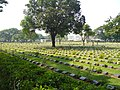 Kanchanaburi, cemetary - panoramio.jpg