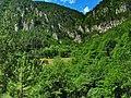 Kanjon Belog Rzava - panoramio (9).jpg