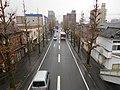 Kantsū-dōro Japan route 264.JPG