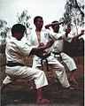 Karate Do 60's.jpg