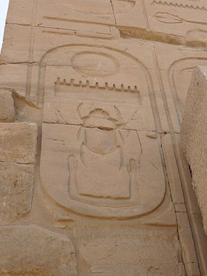 Scarabaeus sacer - Carved relief of the cartouche representing Thutmose III on the wall of the Precinct of Amun-Re, Karnak