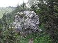Karwendel- Felsen am Wegesrand - geo.hlipp.de - 15863.jpg