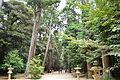 Kashima-jingu shasou.JPG