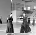 Katori shinto ryu training.png