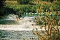 Kempston Weir - geograph.org.uk - 2009080.jpg