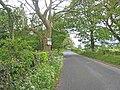 Kilbroney Valley road - geograph.org.uk - 441818.jpg