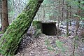 Kleboniškio bunkeriukai (netoli aikštelė su mediniais nykštukais), 1 PK- WWI small reinforced shelters - panoramio.jpg
