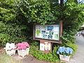 Kobe Municipal Arboretum in 2013-6-22 No,1.JPG