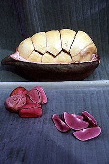 The segmented kola nut, in the shell and separated