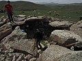 Korats Karer , Armenian Stonehenge (28652642570).jpg