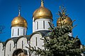 Kremlin churches - panoramio.jpg