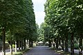 KulTour Parkanlage Sanssouci Am Grünen Gitter-3193.jpg