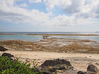 Kuroshima (Okinawa) - Image: Kuroshima Nakamoto Watanji