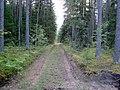 Līksna Parish, LV-5456, Latvia - panoramio.jpg