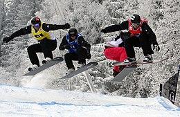 Alex pullin wikipedia for Xxiii giochi olimpici invernali di pyeongchang medaglie per paese