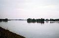 La Loire près de Saint-Benoît-sur-Loire (septembre 1969).jpg