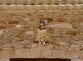 La Pesquera, escudo sobre ventana en Casa Palacio o Venta del Pesquete.jpg