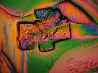 La proteína arcoiris.jpg
