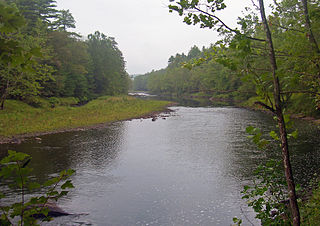 Lackawaxen River river in the United States of America