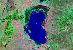 Lake Chilwa - seen from space (false color)