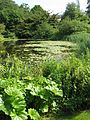 Lake at Copenhagen Botanical Garden.jpg