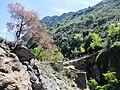 Landschaft in der Sierra Nevada11.jpg