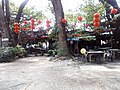Lanterns hung around huge tree, Ipoh, Malaysia.jpg