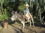 Las Yaguas, Marea del Portillo Horse riding tour.jpg