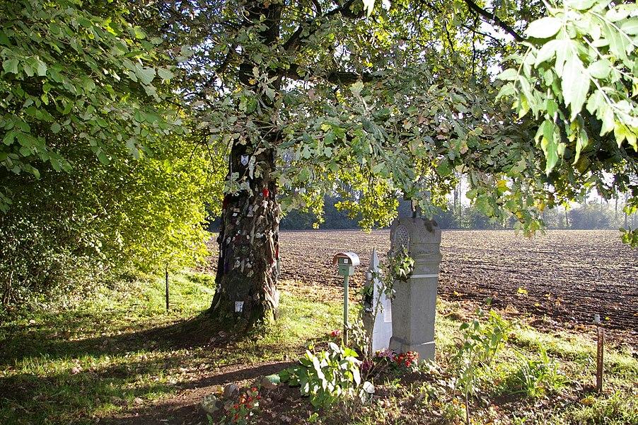 Chêne à clous et chapelle Saint-Antoine de Padoue