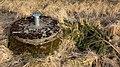 Lid of a rural septic tank.jpg