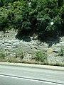 Limestone Cliff - panoramio.jpg