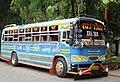 Local-Patriot Bus - panoramio.jpg
