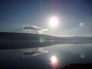 Loch Fyne - Loch Fyne