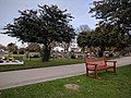 Long shot of the bench (OpenBenches 2771-1).jpg