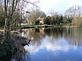 Looking Across Kingsley Pond - geograph.org.uk - 353240.jpg