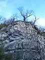 Lover's Leap, Stoney Middleton - geograph.org.uk - 1713605.jpg