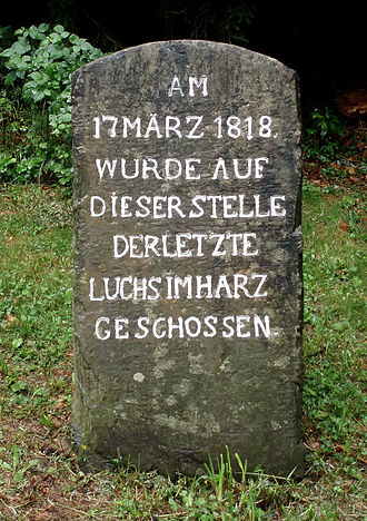 Harz National Park - Lynx Stone of 1818