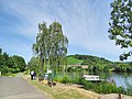 Mülheim (Moselle), Germany - panoramio (30).jpg